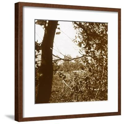 German trenches, c1914-c1918-Unknown-Framed Photographic Print