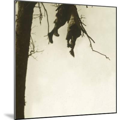 Body in tree, Bois d'Avocourt, Verdun, northern France, c1914-c1918-Unknown-Mounted Photographic Print