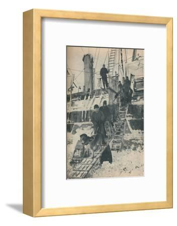 'Exercising the Dogs', 1936-Unknown-Framed Photographic Print