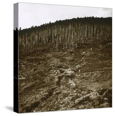 Alsace, c1914-c1918-Unknown-Stretched Canvas Print