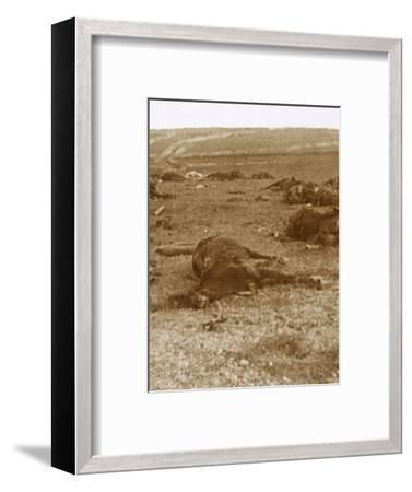 After the charge, Beauséjour, northern France, c1914-c1918-Unknown-Framed Photographic Print