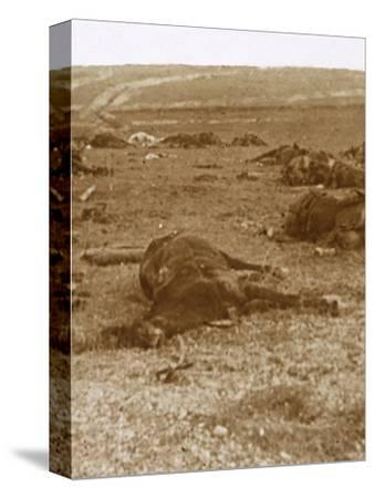 After the charge, Beauséjour, northern France, c1914-c1918-Unknown-Stretched Canvas Print