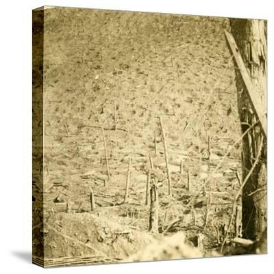 Ravine at Les Éparges, northern France, c1914-c1918-Unknown-Stretched Canvas Print