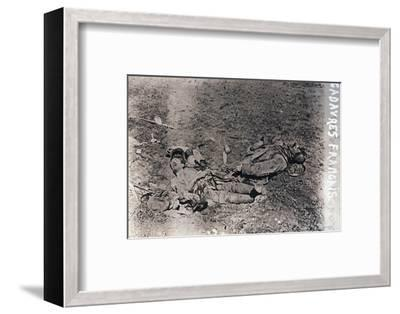 Bodies of dead French soldiers, c1914-c1918-Unknown-Framed Photographic Print