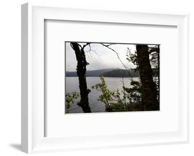 Wild landscape, Lelång Lake, Dalsland, Götaland, Sweden-Andrea Lang-Framed Photographic Print