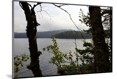Wild landscape, Lelång Lake, Dalsland, Götaland, Sweden-Andrea Lang-Mounted Photographic Print