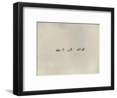 'The Southern Party Marching into the White Unknown', 1908, (1909)-Unknown-Framed Photographic Print