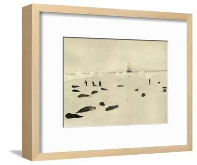 'The Nimrod at Pram Point on March 4, 1909'-Unknown-Framed Photographic Print