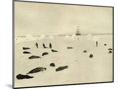 'The Nimrod at Pram Point on March 4, 1909'-Unknown-Mounted Photographic Print