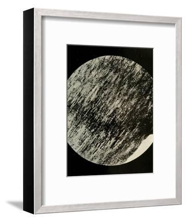 'Fossil Wood in Sandstone, from a Moraine in Latitude 85° South', c1908, (1909)-Unknown-Framed Giclee Print