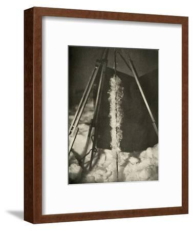 'Ice Crystals Formed on the Line of a Fish Trap', c1908, (1909)-Unknown-Framed Photographic Print