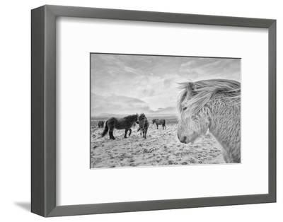 Tough guys-John Colbensen-Framed Photographic Print