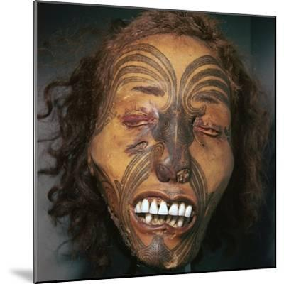 Mummified head of a Maori Chief-Unknown-Mounted Giclee Print