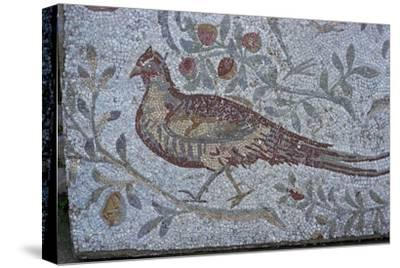 Floor mosaic from a Roman villa-Unknown-Stretched Canvas Print