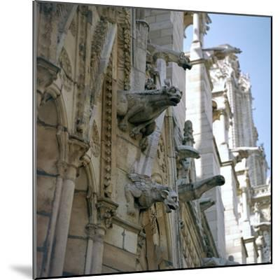 Detail of the north side of Notre Dame, 12th century-Unknown-Mounted Photographic Print