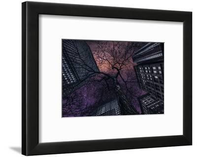 Interstelar-Jackson Carvalho-Framed Photographic Print