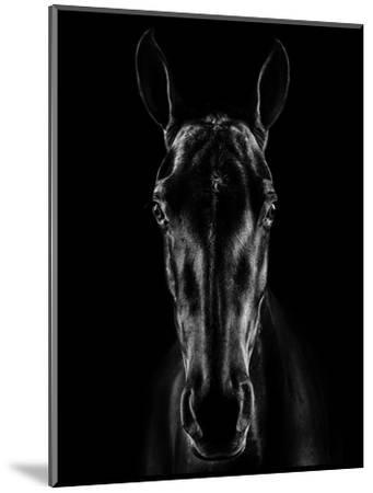 The Horse in Noir-Jackson Carvalho-Mounted Photographic Print