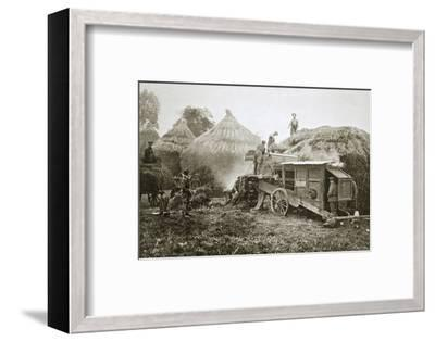 Threshing for straw for soldiers' use, France, World War I, 1916-Unknown-Framed Photographic Print