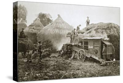 Threshing for straw for soldiers' use, France, World War I, 1916-Unknown-Stretched Canvas Print