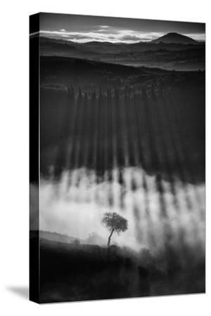 Rising up-Peter Svoboda, MQEP-Stretched Canvas Print