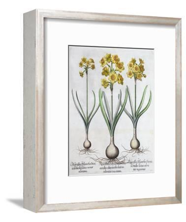 Narcissus, 1613-Unknown-Framed Giclee Print