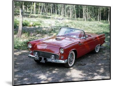 A 1955 Ford Thunderbird-Unknown-Mounted Photographic Print