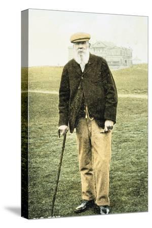 Old Tom Morris, Scottish golfer, postcard, 1900-Unknown-Stretched Canvas Print