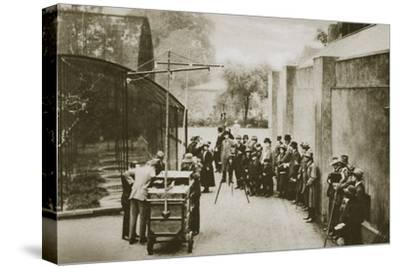 BBC broadcast from the aviary at London Zoo, 20th century-Unknown-Stretched Canvas Print