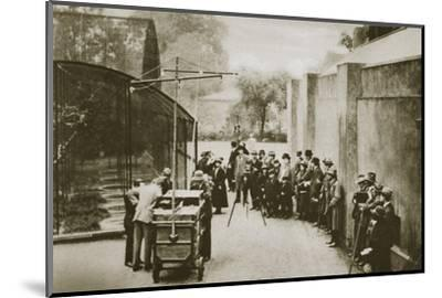 BBC broadcast from the aviary at London Zoo, 20th century-Unknown-Mounted Photographic Print