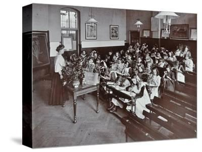 Nature lesson, Albion Street Girls School, Rotherhithe, London, 1908-Unknown-Stretched Canvas Print