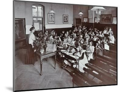 Nature lesson, Albion Street Girls School, Rotherhithe, London, 1908-Unknown-Mounted Photographic Print