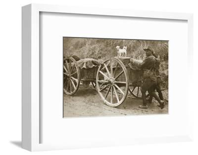 Australian troops returning from the trenches with their mascot, World War I, France, 1916-Unknown-Framed Photographic Print