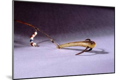 Fish hook-Werner Forman-Mounted Giclee Print