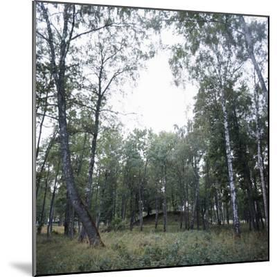 Viking burial mound, Fjord of Oslo, Norway-Werner Forman-Mounted Photographic Print