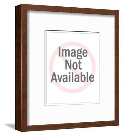 Meditative II-Angela Cameron-Framed Photographic Print