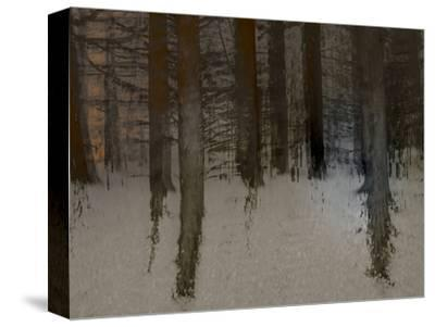 Winter Sunrise-Valda Bailey-Stretched Canvas Print