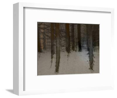 Winter Sunrise-Valda Bailey-Framed Photographic Print