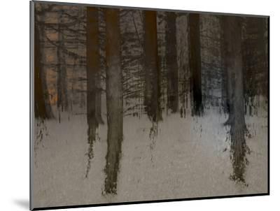 Winter Sunrise-Valda Bailey-Mounted Photographic Print