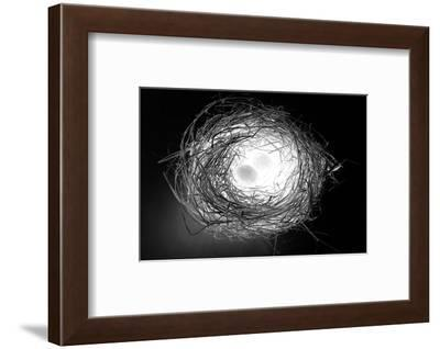 Over Easy-Mary Woodman-Framed Photographic Print