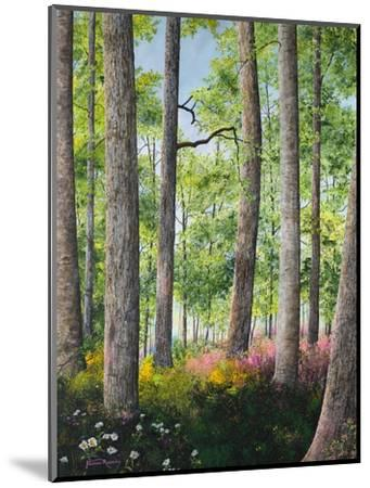 Enchanted Forest-James Redding-Mounted Art Print
