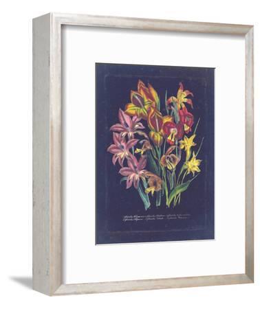 Vintage Dark Floral on Indigo II--Framed Art Print