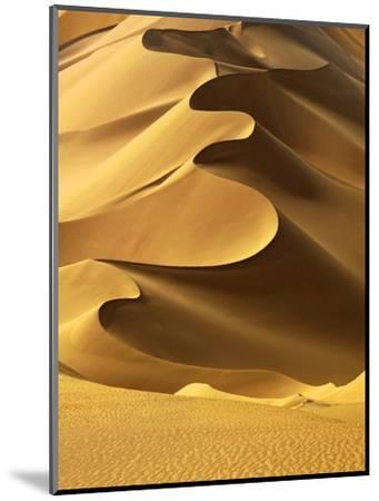 In the Dunes 2-Design Fabrikken-Mounted Photographic Print