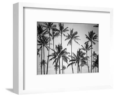 Palm Heaven-Design Fabrikken-Framed Photographic Print