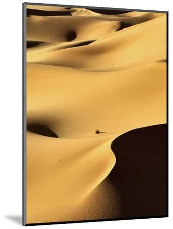 In the Dunes 1-Design Fabrikken-Mounted Photographic Print