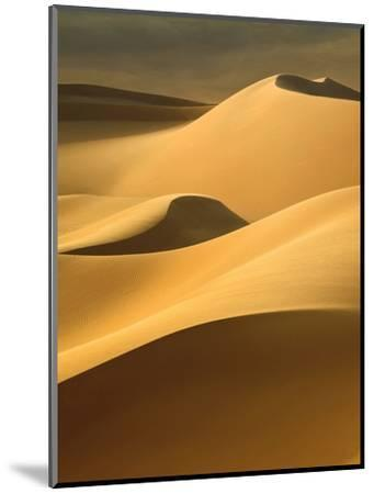 In the Dunes 3-Design Fabrikken-Mounted Photographic Print