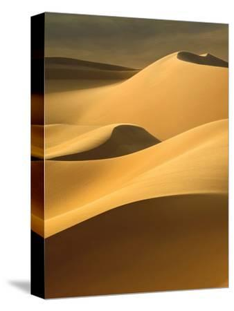 In the Dunes 3-Design Fabrikken-Stretched Canvas Print