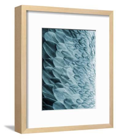 Volture I-Design Fabrikken-Framed Art Print