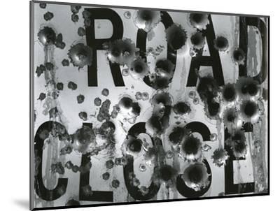 Metal Sign, c. 1975-Brett Weston-Mounted Photographic Print