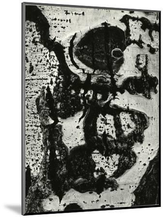 Tree Bark, 1972-Brett Weston-Mounted Photographic Print