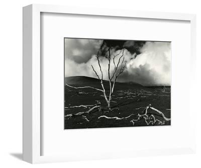 Clouds, Lava, Tree, Hawaii, 1978-Brett Weston-Framed Photographic Print